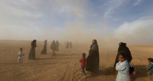 المنظمة العربية للهلال الأحمر والصليب الأحمر توجه نداء إنسانياً لإغاثة نازحي الموصل