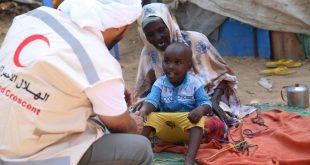 المنظمة العربية للهلال الأحمر والصليب الأحمر تدين استهداف قافلة الهلال الأحمر الإماراتي في الصومال