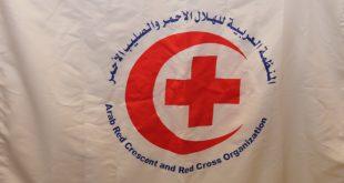التويجري يثمن أمر خادم الحرمين الشريفين استضافة ذوي شهداء العمل الإنساني بجمعيات الهلال الأحمر والصليب الأحمر العربية للحج