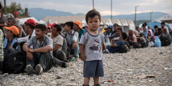 أزمة اللاجئين والنازحين وتأثيرها على المنطقة العربية: تسليط الضوء على دور المنظمة العربية للهلال الأحمر والصليب الأحمر