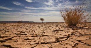 التويجري: مواجهة الكوارث المناخية بالتوعية ومنع الممارسات المدمرة للبيئة