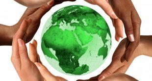 التويجري : حماية البيئة بالتوعية وتفعيل الرقابة الدولية
